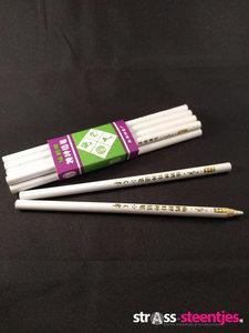 Hotfix picker pennen (10 stuks)